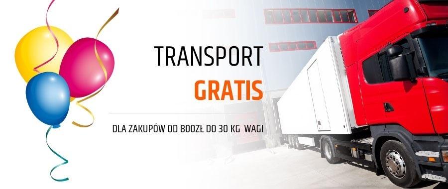 Promocja Transportowa sieci Platforma