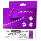 Taśma LED ORO Strip 600L 2835-NWD violet